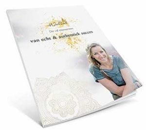 Ebook-Cover-de-vijf-elementen-van-succes